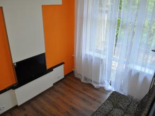 Bright Condo with Internet Access and Television - Klaipeda County vacation rentals