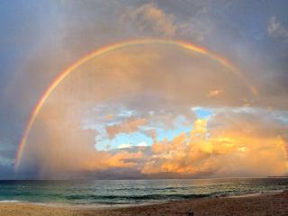 Regal Beach #133 - Seven Mile Beach vacation rentals