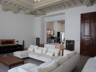 Classy and spacious loft - Flanders & Brussels vacation rentals