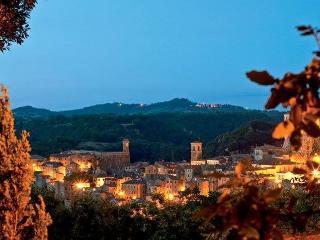 Villa  in Toscana zona terme e parco archeologico - Sorano vacation rentals