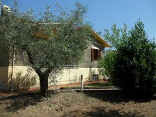 Nice 3 bedroom Cottage in Canale Monterano - Canale Monterano vacation rentals