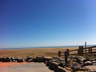 Gruissan plage  Chalet 100 m de la plage - Gruissan vacation rentals