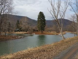 A Beautiful Cabin on Pine Creek - Morris vacation rentals