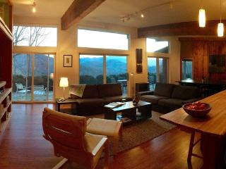 Handcrafted, Stylish Cabin Near Town! Mtn View - Spruce Pine vacation rentals