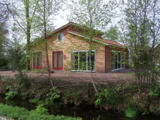 Bright 3 bedroom Bungalow in Beetsterzwaag with Internet Access - Beetsterzwaag vacation rentals