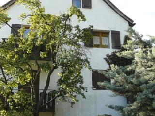 3 bedroom Apartment with Deck in Jenins - Jenins vacation rentals