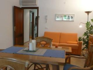 Great flat-beach side Cala Gat ( 100 meter) wi-fi - Cala Ratjada vacation rentals