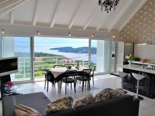 Nice Villa with Internet Access and A/C - Orasac vacation rentals