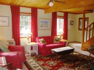 Seaside Cottage - dog friendly - I mile to Park - Eastsound vacation rentals