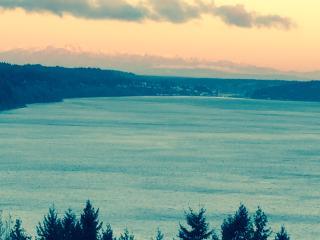 U.S. Open Condo / Unmatched Beauty & Convenience - Tacoma vacation rentals