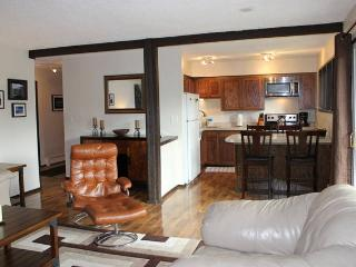 The Grizzly Den (2 BR Wildernest) - Silverthorne vacation rentals
