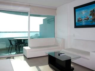 Gorgeous 2 Bedroom in Luxury Condo - Colombia vacation rentals