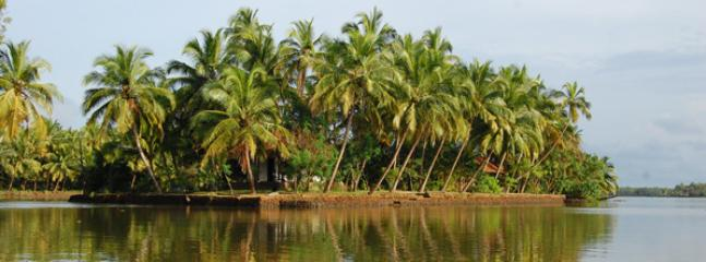 Coconut Island - Coconut Island, Guruvayur, Thrissur, Kerala, India - Trichur - rentals