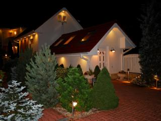 Romantic House with Garden and Alarm Clock - Busteni vacation rentals