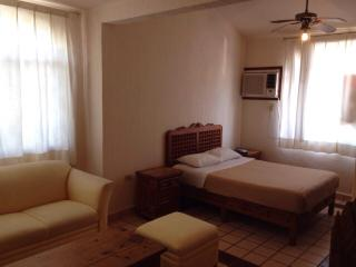 Nice Studio with Internet Access and Garden - Cancun vacation rentals