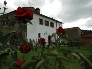 AGRITURISMO VILLALBA - Arezzo vacation rentals