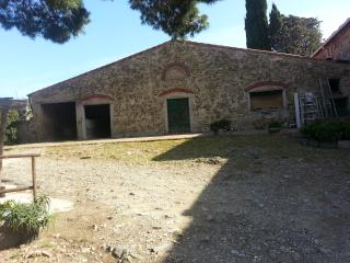 Nice Farmhouse Barn with Mountain Views and Parking - Castellaccio vacation rentals