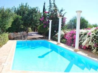 Dionysus 3 bedrm, Fantastic views Colorful garden - Paphos vacation rentals
