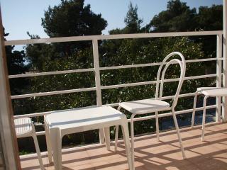 Apartments and Rooms Joško - 39911-A6 - Gradac vacation rentals