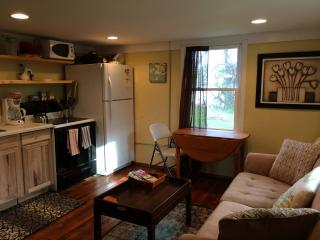 Cozy Apt in N. Avl- Close to all! - Asheville vacation rentals