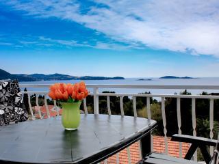 Cozy 2 bedroom Apartment in Mlini - Mlini vacation rentals