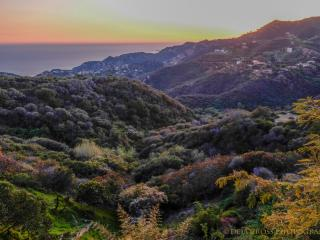 Saddle Peak Buddha House - Malibu - Topanga vacation rentals