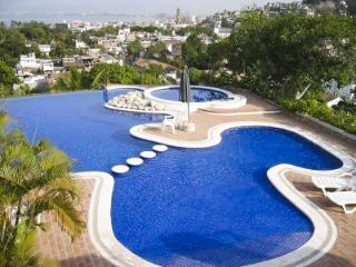 Selva Romantica: Paraiso #1 - Puerto Vallarta vacation rentals