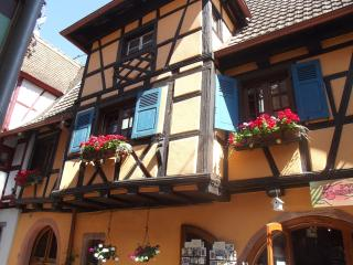 1 bedroom Gite with DVD Player in Eguisheim - Eguisheim vacation rentals