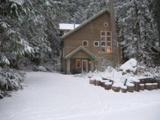 CR102MapleFalls  - Snowline #51 -Executive Style Cabin for 8 - North Cascades Area vacation rentals
