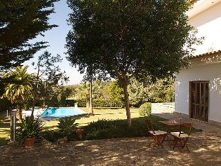 Bright 4 bedroom Villa in Moscari with Internet Access - Moscari vacation rentals