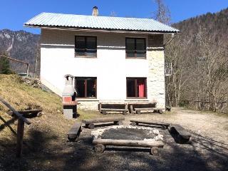 Nice 3 bedroom Cottage in Zgornje Gorje - Zgornje Gorje vacation rentals