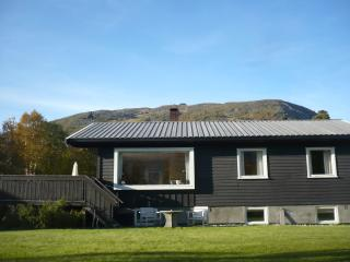 Nice House with Internet Access and Cleaning Service - Oppdal vacation rentals