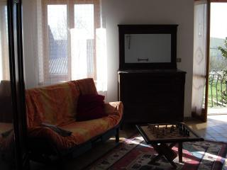 Camera Grande La Grassa Holiday - San Damiano d'Asti vacation rentals