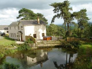 Stunning View Farmhouse - West Wales - Hot Tub - Nantgaredig vacation rentals