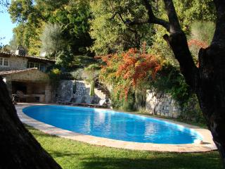 Stylish, rustic villa, 3 of 5 bedrooms with aircon - Tourette-sur-Loup vacation rentals