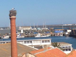 Nice Penthouse with Internet Access and Dishwasher - Olhao vacation rentals