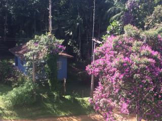 Entre as Montanhas e o Mar - Ubatuba vacation rentals