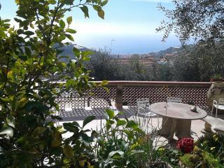 Bellavista House ..mare,ulivi e relax - Pompeiana vacation rentals