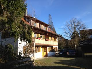 Cozy Condo with Internet Access and Porch - Goppertsweiler vacation rentals