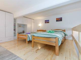 LOFTY apartment in the VERY centre - Belgrade vacation rentals