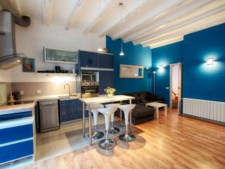 Modern 2 BR, 1 BA loft close to beach - Barcelona vacation rentals