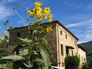 Agriturismo Al Palazzaccio Riccio - Calci vacation rentals