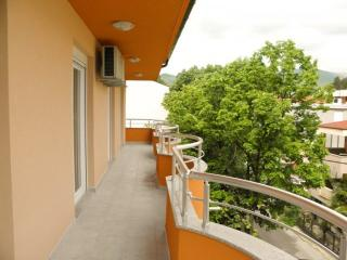 Villa Polonia - Mostar vacation rentals