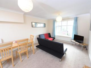 Perfect 2 bedroom Manchester Apartment with Internet Access - Manchester vacation rentals