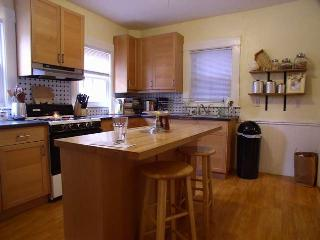 Spacious One Bedroom neat Harvard and MIT - Cambridge vacation rentals