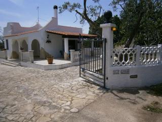 Wonderful 2 bedroom Ostuni Villa with Grill - Ostuni vacation rentals
