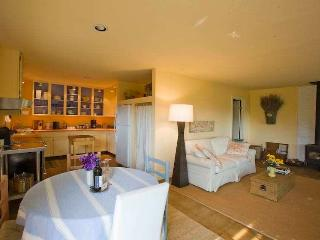 Hillview Cottage - Boonville vacation rentals