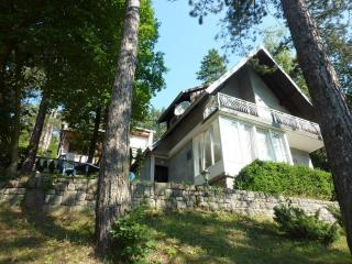 """Robinson"" style house, vacation in forest on lake - Banovici vacation rentals"