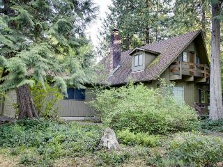 Cozy, rustic home w/ river access, entertainment, & skiing nearby! - Rhododendron vacation rentals