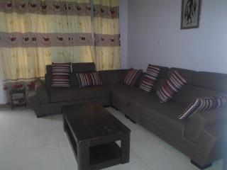 Beautiful Condo with Internet Access and Balcony - Kampala vacation rentals